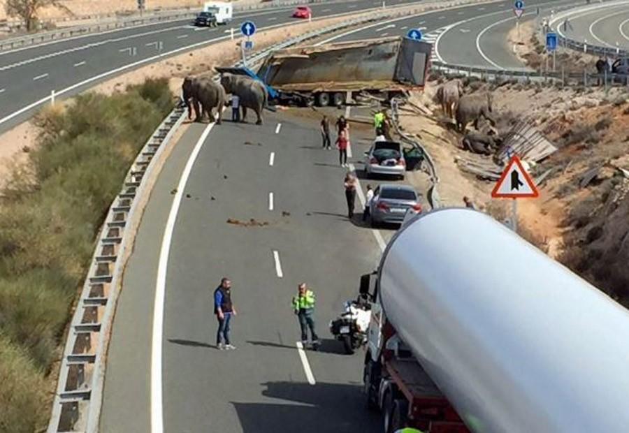 Nesreća u Španiji: U sudaru jedan SLON stradao, dva povrijeđena (VIDEO)