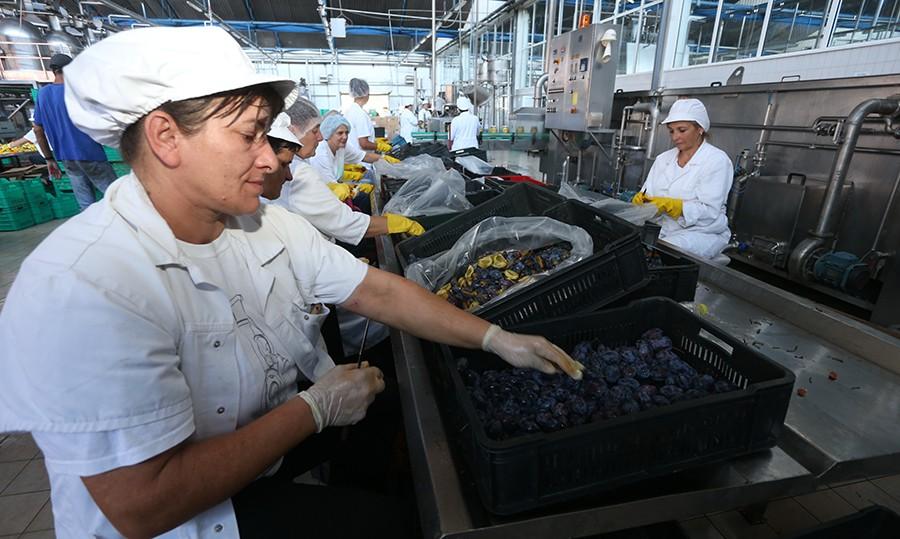 Nekadašnje GIGANTE zamijenile firme iz EU: U BiH samo jedan odsto velikih preduzeća