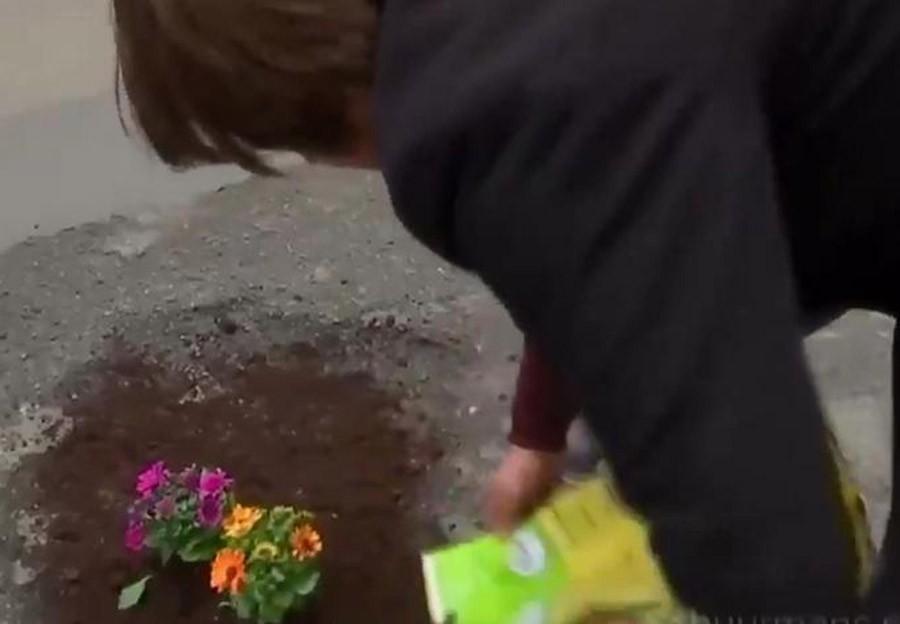 KREATIVNI PROTESTŠeta gradom i sadi narcise i muškatle u svaku rupu na ulici (VIDEO)