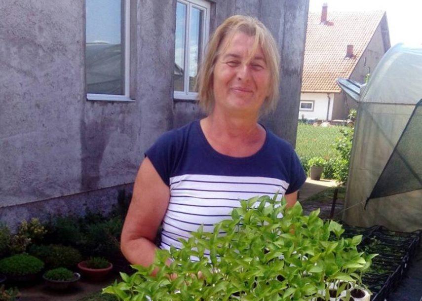 Proizvodnja paprika sve zastupljenija u Semberiji: Besplatan rasad roge za 43 poljoprivrednika