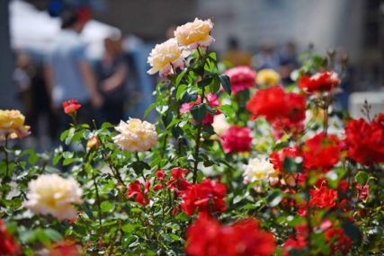 BIZARNO ILI ROMANTIČNO Žena osam godina za Dan zaljubljenih dobija cvijeće od MRTVOG SUPRUGA