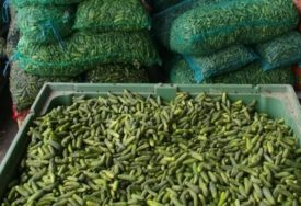 NALOŽENO UNIŠTAVANJE Zabranjen uvoz pošiljke krastavca zbog povećanog sadržaja pesticida