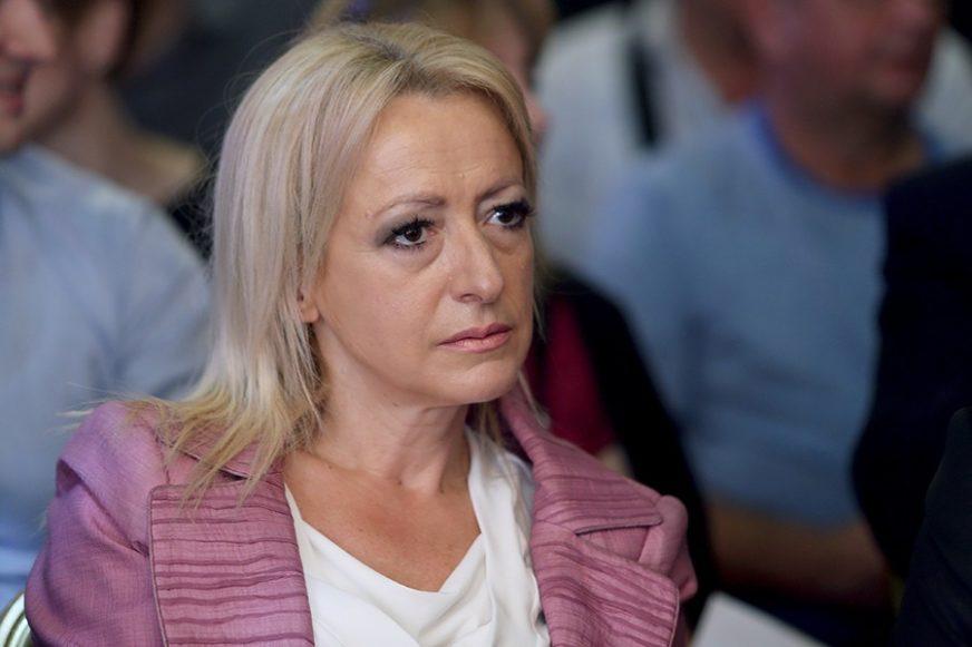 """PANDUREVIĆ OŠTRO """"Budžet institucija BiH za 2020. godinu je skandalozan"""""""