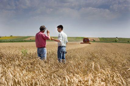 Za pšenicu po cijeni od 0,16 evra NIJE BILO zainteresovanih kupaca