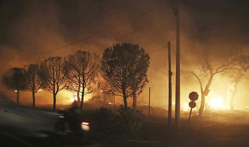 VISOKE TEMPERATURE DONIJELE NEVOLJE Rekordan broj vatrogasaca u borbi protiv požara
