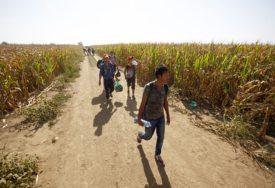 SVE PORAZBIJALI I PORUŠILI Migranti provalili u kuću u Tuzli i ostavili iza sebe HAOS