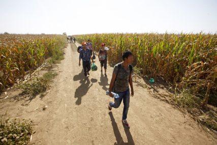 Povećan broj migranata na području bijeljinske regije
