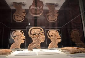 NEURONSKE MREŽE Naučnici stvorili vještačku inteligenciju koja će znati kada joj ne vjerujemo