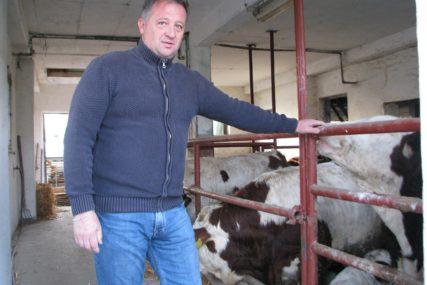 FARMERI LJUTI ZBOG UVOZA MESA Dobra godina nije po mjeri poljoprivrednicima u Lijevče polju