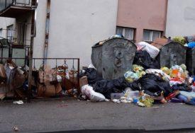 Problem se ne smanjuje: Prevrnuti kontejneri i razbacano smeće postali slika grada
