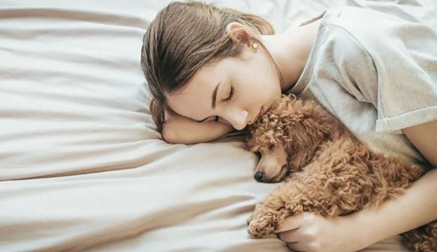BUDITE OPREZNI! Predugo spavanje i drijemanje dovodi do moždanog udara