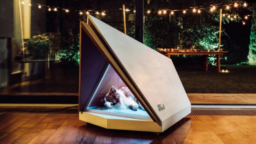 SKLONIŠTE OD BUKE Ford napravio tehnološku kućicu za pse, IDEALNA za predstojeće praznike