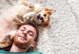 DOK LJUDI UŽIVAJU, LJUBIMCI STRAHUJU Ovim trikovima možete životinjama ublažiti stres od petardi