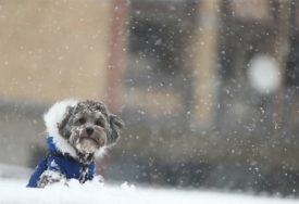 PROMJENA GODIŠNJEG DOBA Počinje zima, danas najkraći dan u godini