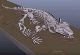JEDINSTVEN UVID U PROŠLOST Tim mađarskog paleontologa otkrio ostatke dinosaurusa