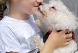 VJERNI ČUVAR ELMO Djevojčica ima i do nekoliko epileptičnih napada u danu, a pas Elmo je spasava (FOTO)