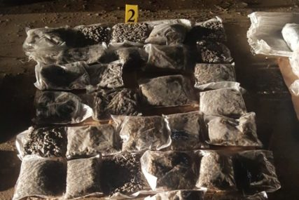 """""""MODRIĆU"""" NE PROMAKNE NI GRAM DROGE Policija u Kolumbiji psu dala neobične ime"""