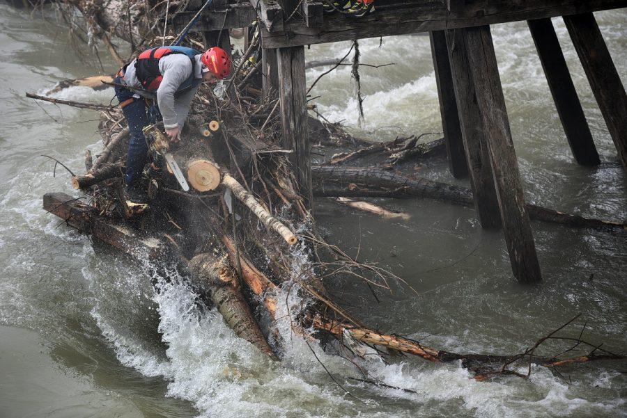 EKIPE NA TERENU Zaglavljeno stablo u konstrukciji starog mosta u Trapistima (VIDEO)