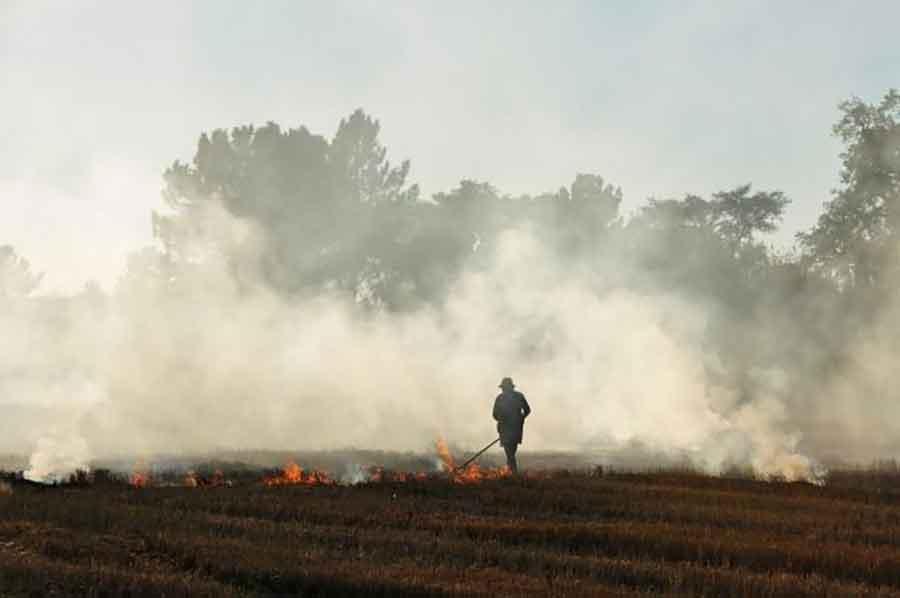 KOBNO PALJENJE RASTINJA Muškarac (56) preminuo od povreda zadobijenih u požaru