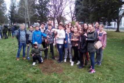 ČAS U PRIRODI Studenti i osnovci posadili stabla u Lazarevu