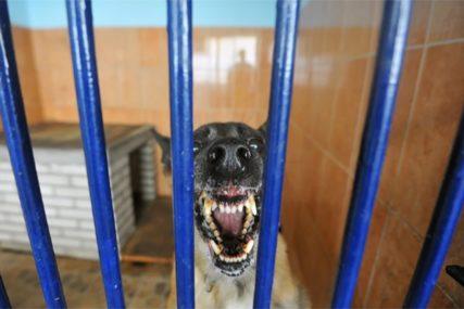 DRAMA NA ULICI Psi izujedali dvije djevojčice i njihovog djeda, koji je pokušao da ih zaštiti