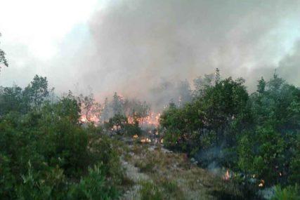 PUNO POSLA ZA VATROGASCE U Bileći aktivna dva požara, domaćinstva nisu ugrožena