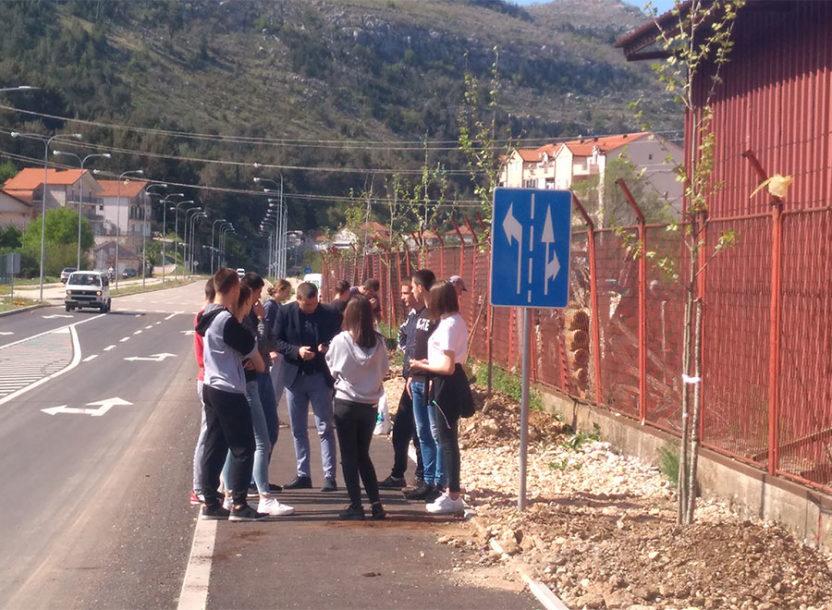 OBNOVLJENA TRADICIJA Maturanti zasadili platane pored nove saobraćajnice