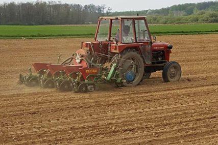 Toplotni udari loše utiču na biljke: Suša će SMANJITI PRINOSE i kvalitet žitarica