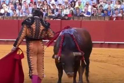 STRAVIČAN SNIMAK KRUŽI INTERNETOM Ovaj matador naljutio je korisnike društvenih mreža (VIDEO)