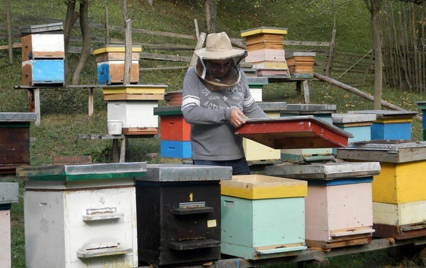 """""""ZDRAVIJE UZ KOŠNICE, NEGO U STANOVIMA"""" Premijer RS izlazi u susret kolegama pčelarima"""