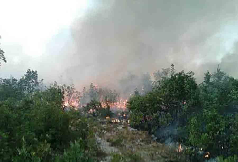 VATROGASCI NA TERENU Požar između Bileće i Trebinja i dalje aktivan