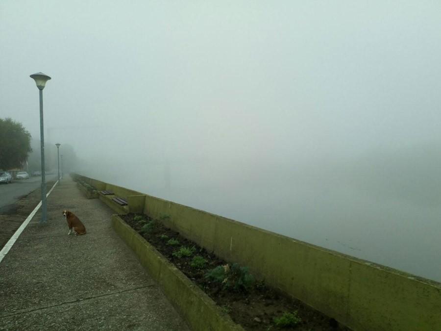 UPOZORENJE ZA VOZAČE Smanjena vidljivost zbog magle u kotlinama