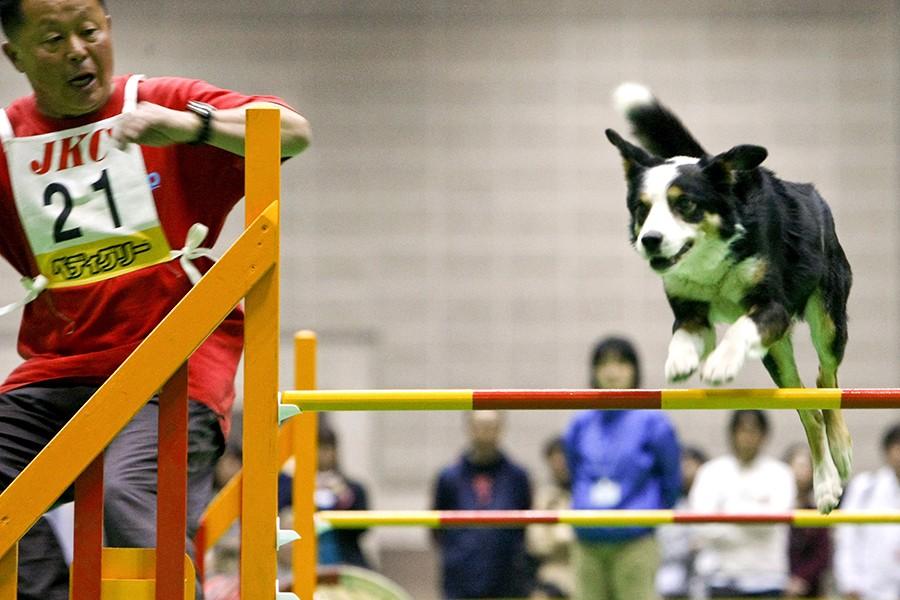 Foto: Dai Kurokawa/EPA