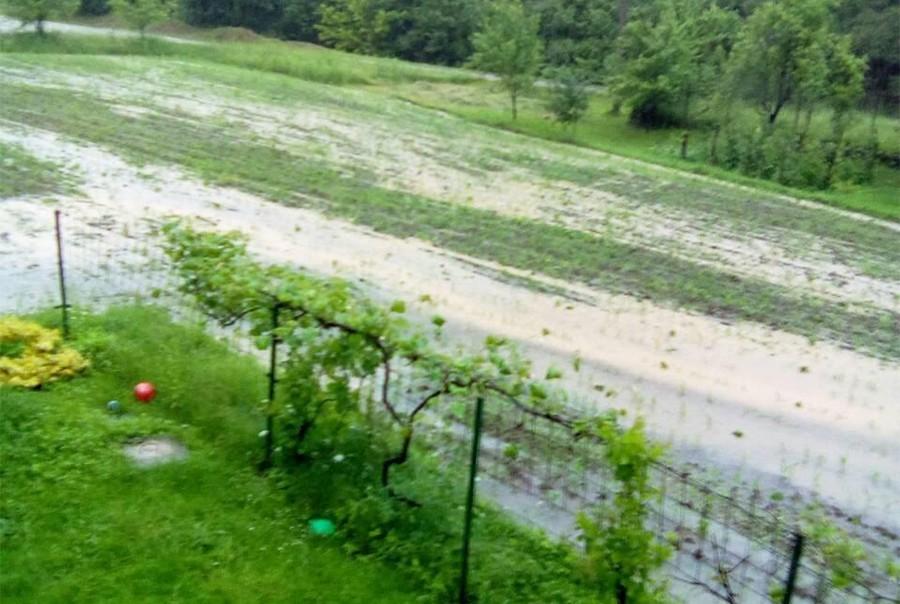 Naknada štete nakon nepogoda u maju: 250 poljoprivrednika dobilo 122.000 KM
