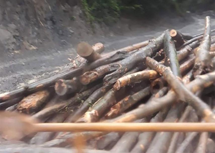 """""""Niko prstom da mrdne"""": Most u Tesliću zatrpan trupcima, mještani negoduju"""