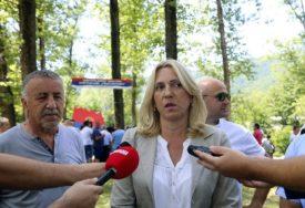 Cvijanović: SDA glavni krivac zašto nije pokrenut proces formiranja vlasti na nivou BiH