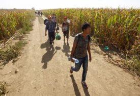 """""""RUČAK SAM IM SERVIRAO"""" Nije ostala kuća da migranti nisu ušli u nju, MJEŠTANI UPLAŠENI"""