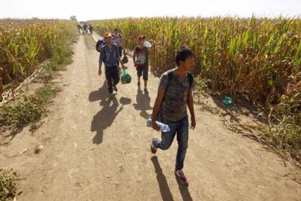 Policija nastavlja sa redovnim kontrolama: U Beogradu pronađeno 86 ilegalnih migranata