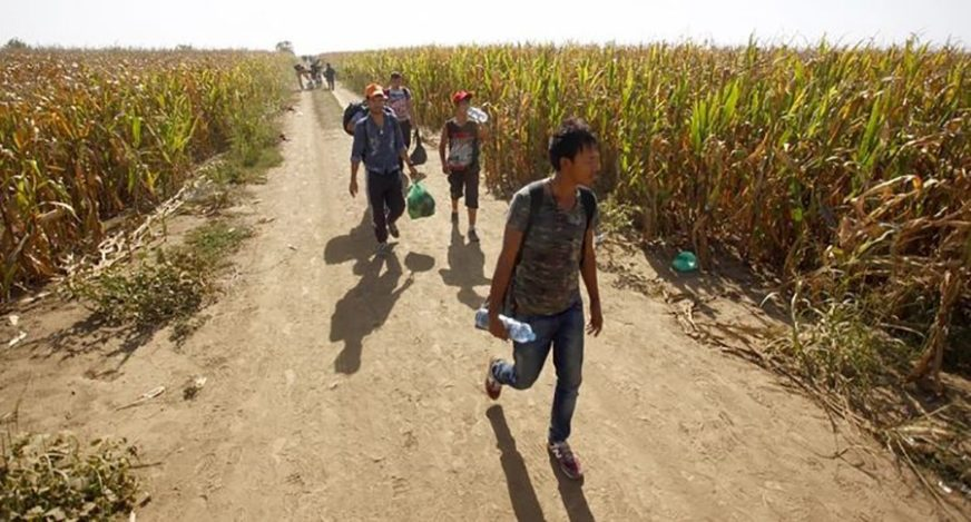 NIJE BILO LAKO ZBOG NEPRISTUPAČNOG TERENA Kod Bileće uhapšeno sedam migranata, POKUŠALI POBJEĆI