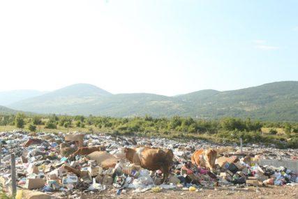 Grad Bijeljina: Za čišćenje divljih deponija potrebna 31.000 maraka