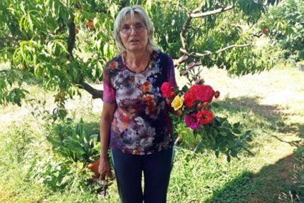 ZLATNE RUKE PROFESORKE Ljubica Miladinović spojila struku s praksom i maštom