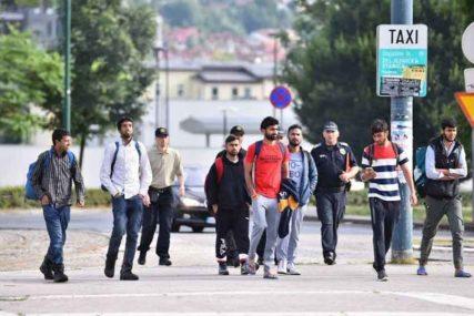 MIGRANTSKA KRIZA Ružnić: Hitno uspostaviti koordinaciju svih nivoa vlasti u BiH