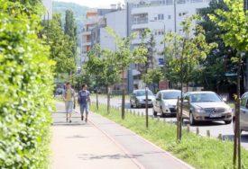 OBNOVA GRADSKOG ZELENILA U tri drvoreda biće zasađeno 16 mladih stabala