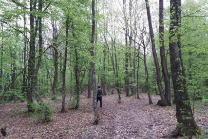 Ulagaće u infrastrukturu i pomoći poljoprivrednike: U Prijedoru rasporedili novac od naknada za šumu