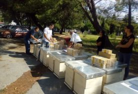 KRADU SVE I SVAŠTA Lopovi odnijeli košnice sa pčelama, vlasnik ALARMIRAO POLICIJU