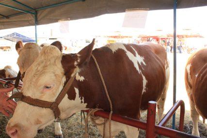 Podrška lovstvu i zaštitu zdravlja životinja: Iz Ministarstva poljoprivrede Srpske isplatili više od milion KM podsticaja