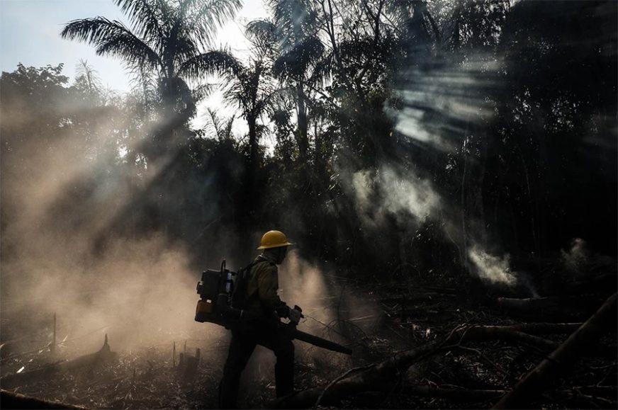 Tusk: Programi za pomoć Amazoniji dosežu vrijednost od 190 miliona evra