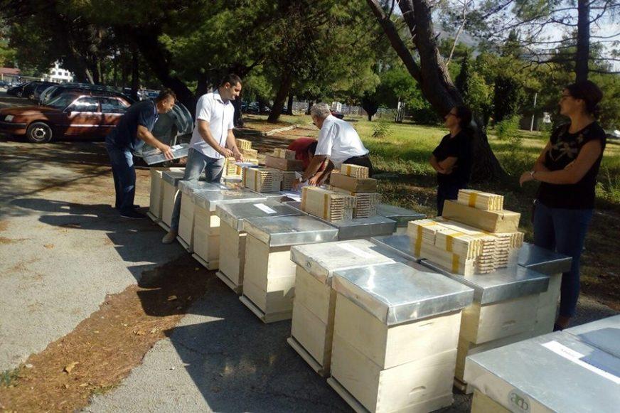 Trebinjski Agrarni fond donirao po pet košnica za pčelare početnike