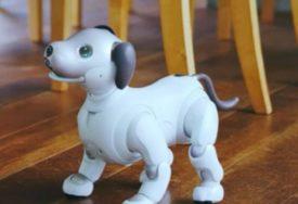 USISAVA, PALI VEŠ MAŠINU Robot-pas ne traži hranu, šetnju, košta 3000 dolara (FOTO)