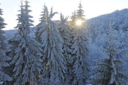 STIŽE OŠTRA ZIMA Snježna oluja u Americi, očekuje se MINUS 37 STEPENI